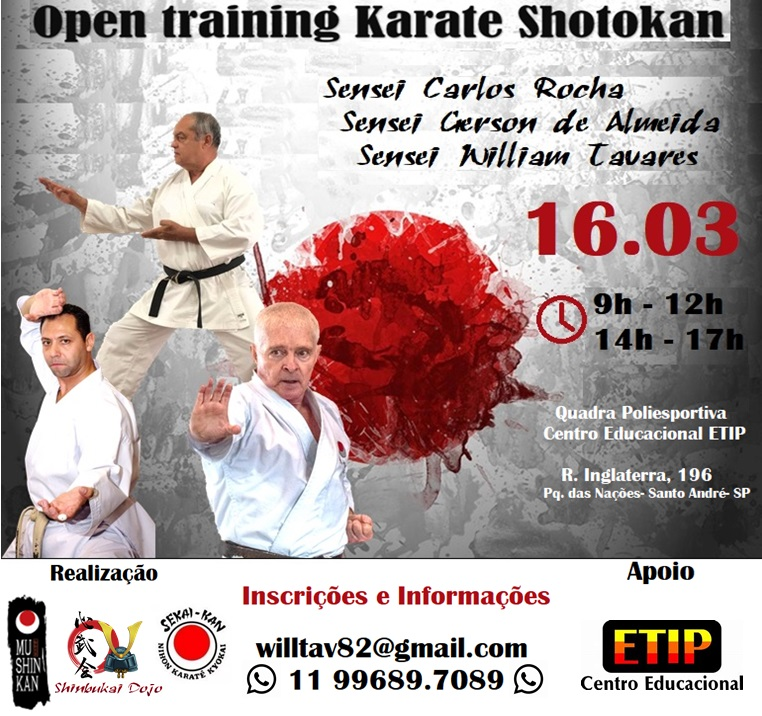 open_training_karate_shotokan_treino